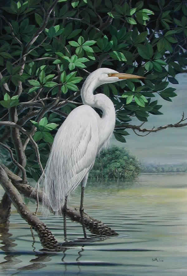 122_Great_Egret